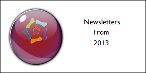 2013news